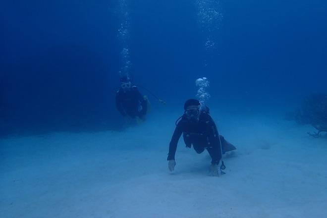 ちょっとシケシケの体験ダイビング