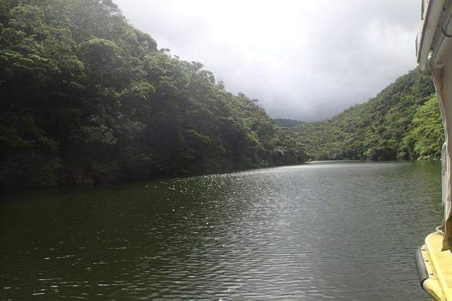 浦内川の調査