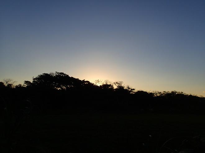 1月 西表島の日常