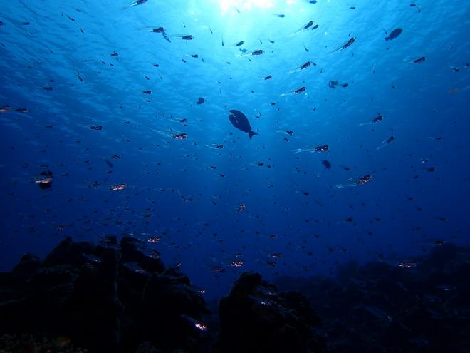 海中の変化