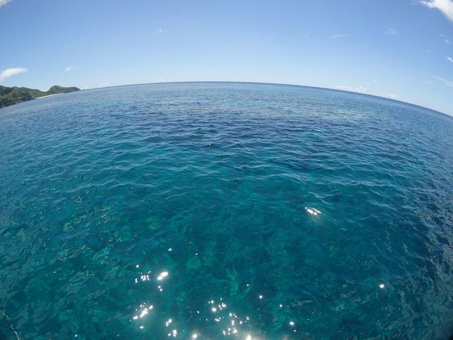 網取、崎山いい海でした