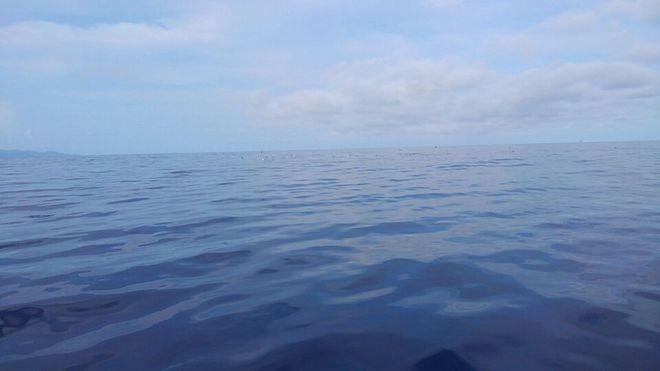 早朝の海でエキサイト