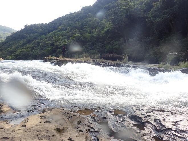川の調査、海の調査
