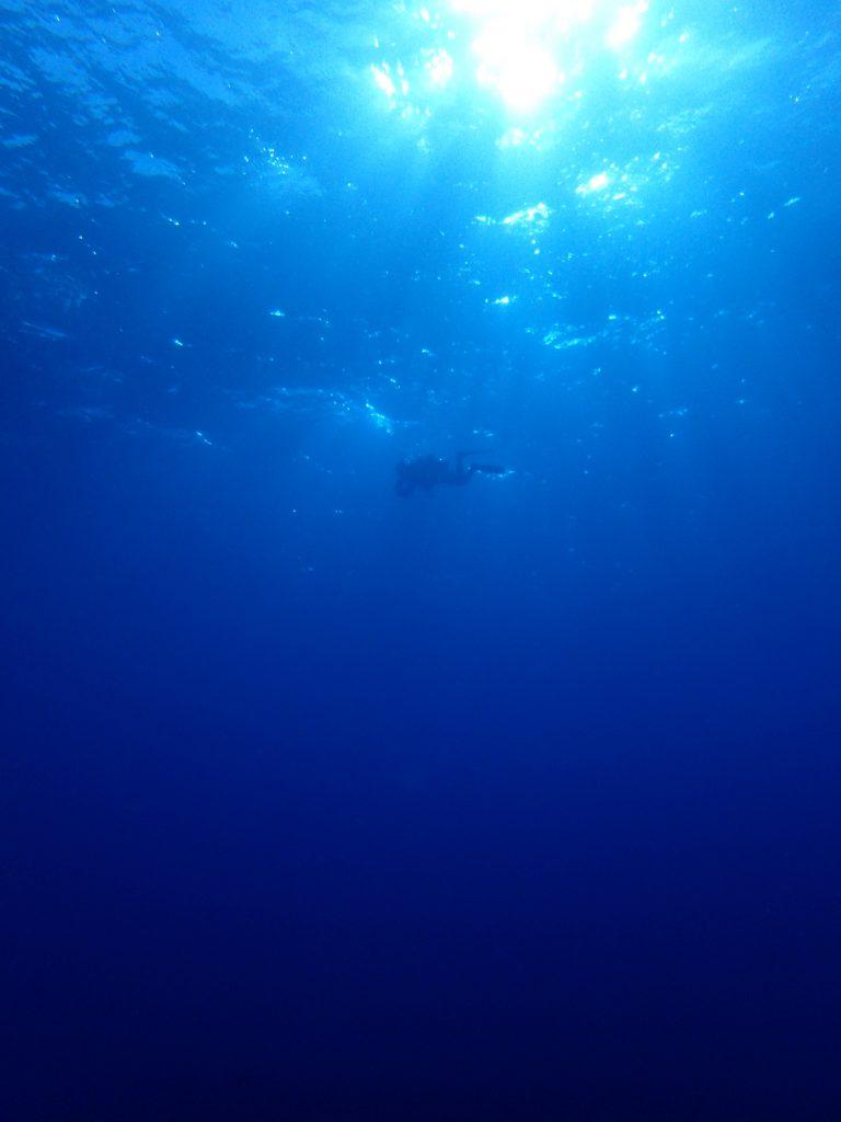 西表の海に癒される