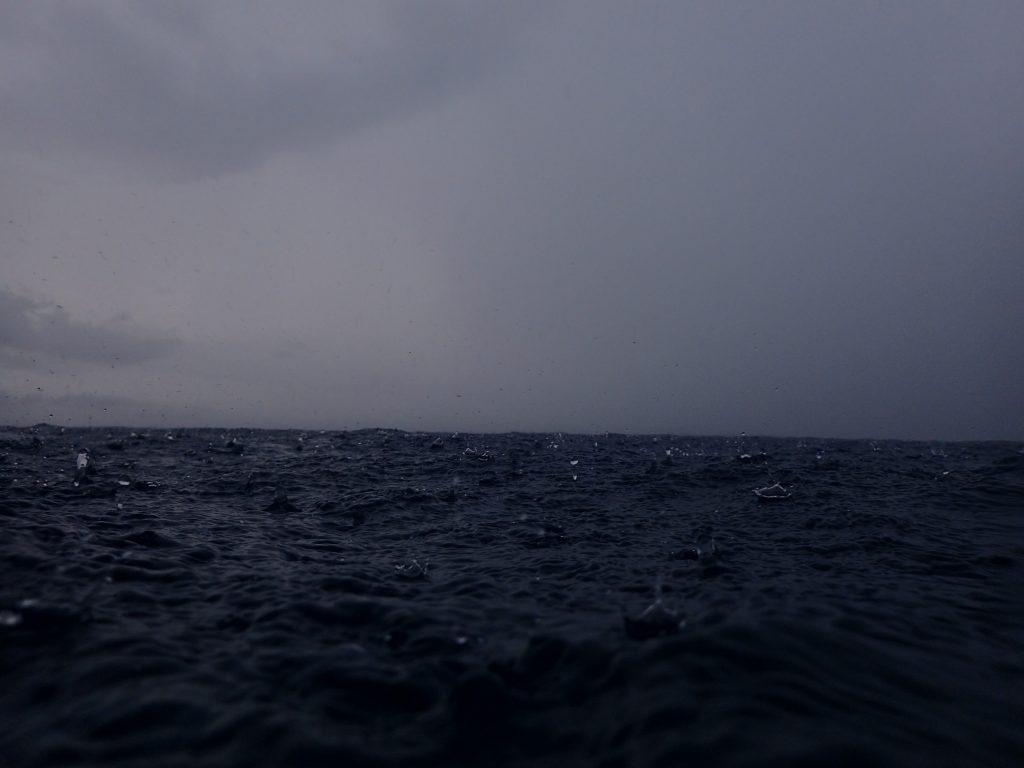 陸近くの海の面白さ