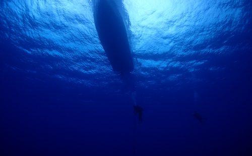 外海ダイビング