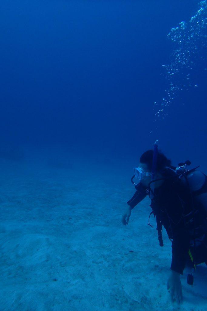 潜っておいて良かった。