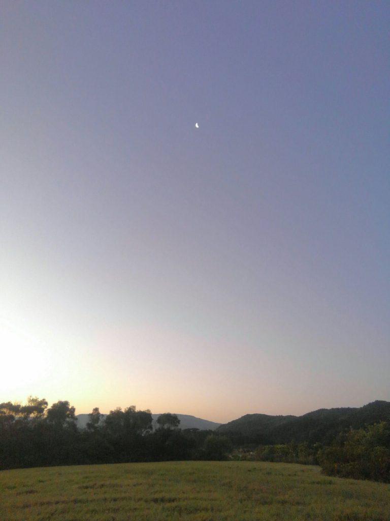 西表の早朝の月