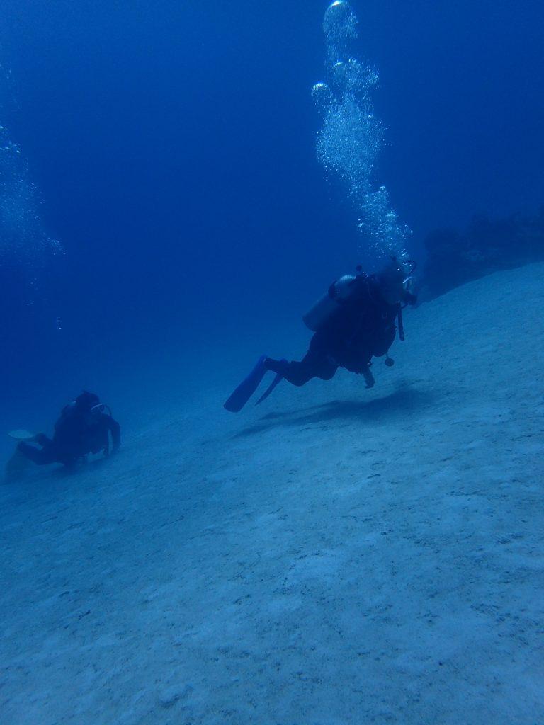 西表で親子ダイビング