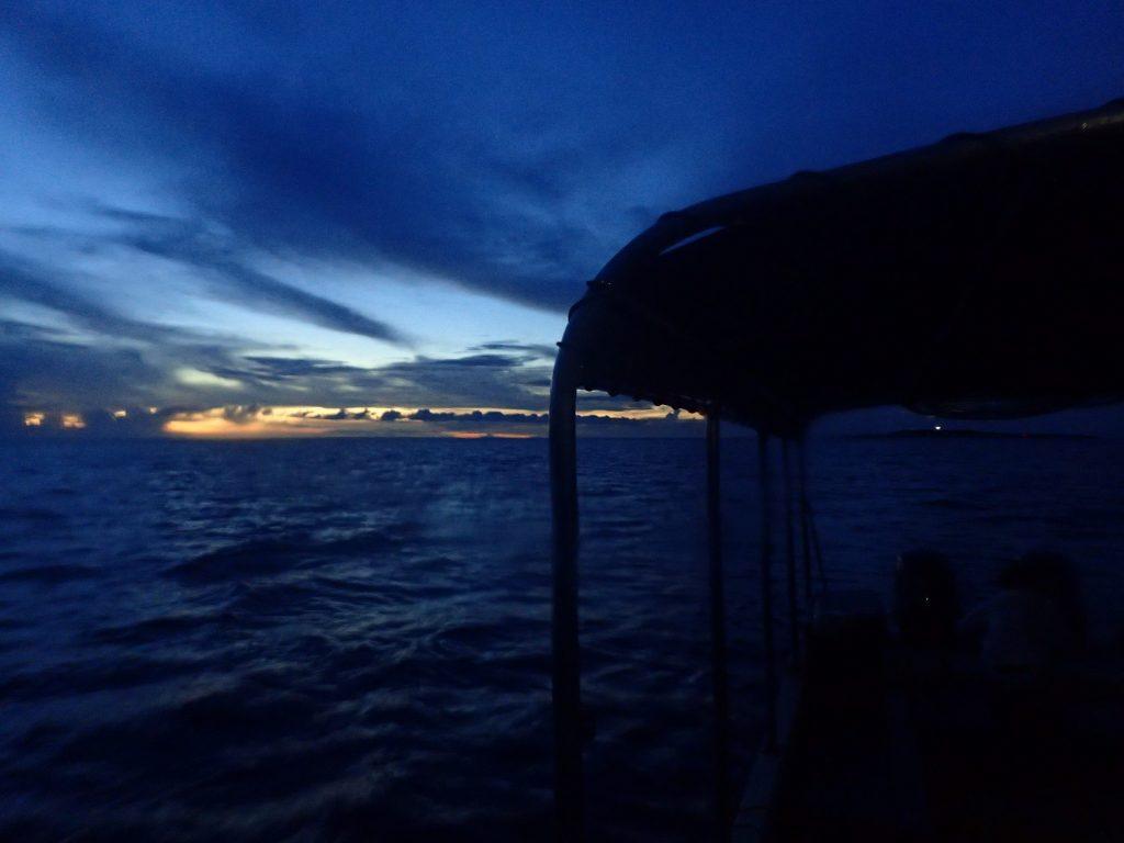 夕方の海を潜る西表島