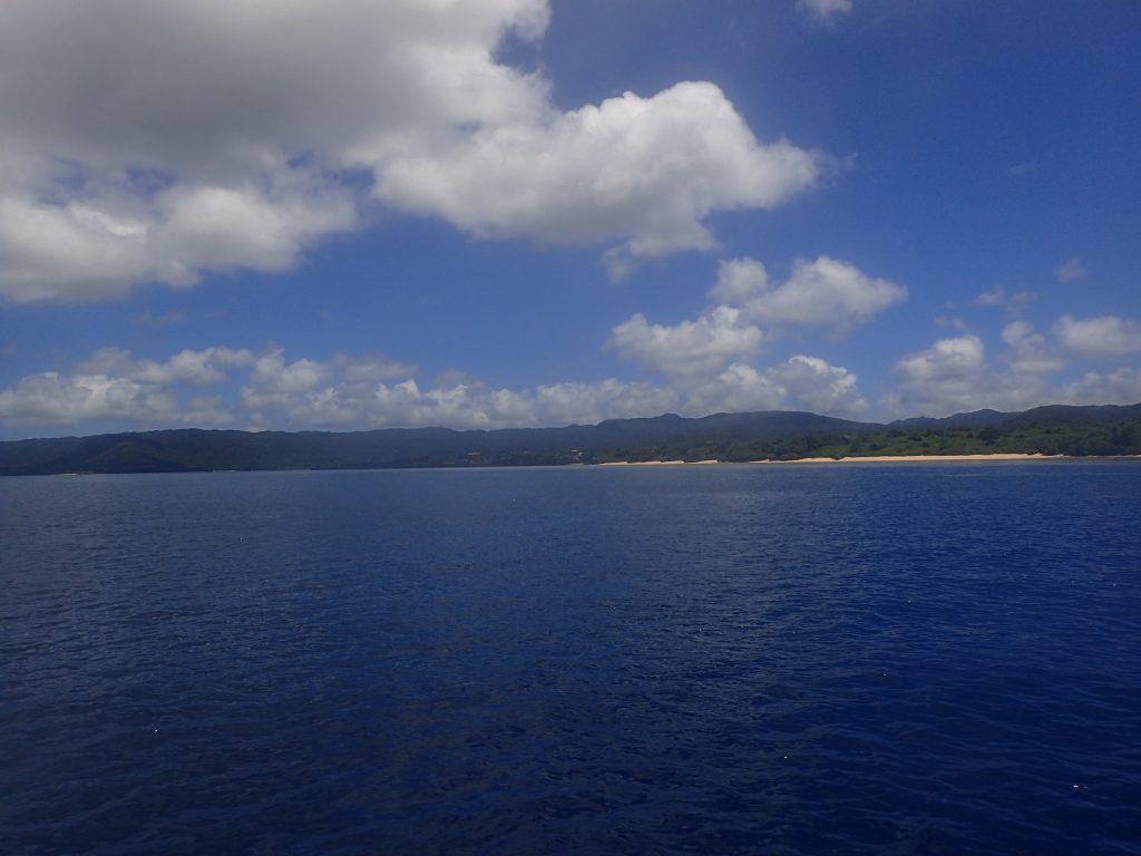 夏の西表島